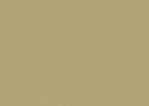 F571 ST2 Металлик золото