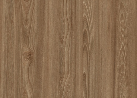 Н1212 ST33  Вяз Тоссини коричневый