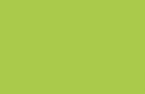 U630 ST9 Зелёный лайм