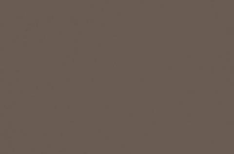 U748 ST9 Трюфель коричневый
