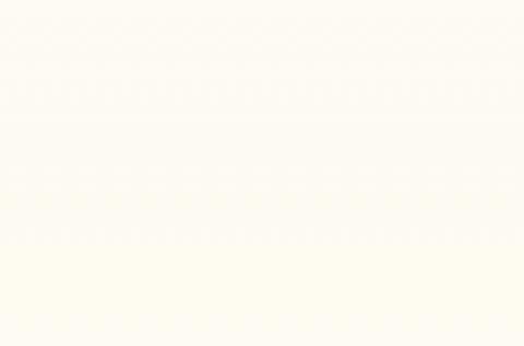 W908 SM белый базовый