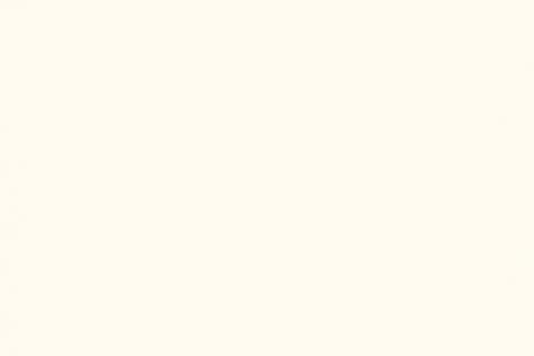 W980 SM белый платиновый